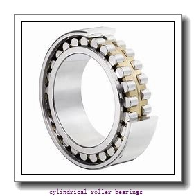 4.875 Inch | 123.825 Millimeter x 5.512 Inch | 140 Millimeter x 2.625 Inch | 66.675 Millimeter  ROLLWAY BEARING B-216-42-70  Cylindrical Roller Bearings