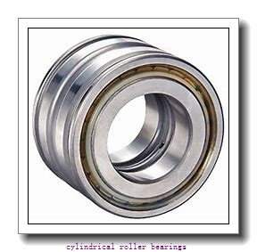 1.181 Inch | 30 Millimeter x 2.441 Inch | 62 Millimeter x 1.125 Inch | 28.575 Millimeter  ROLLWAY BEARING D-206-18  Cylindrical Roller Bearings