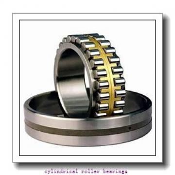 1.181 Inch | 30 Millimeter x 2.441 Inch | 62 Millimeter x 0.813 Inch | 20.65 Millimeter  ROLLWAY BEARING D-206-13  Cylindrical Roller Bearings