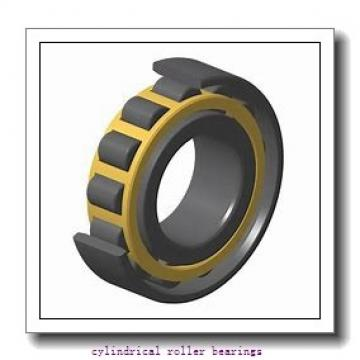3.15 Inch   80 Millimeter x 4.606 Inch   116.99 Millimeter x 2.362 Inch   60 Millimeter  INA RSL185016  Cylindrical Roller Bearings