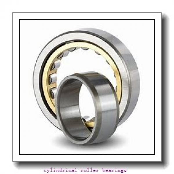 1.378 Inch | 35 Millimeter x 2.519 Inch | 63.97 Millimeter x 0.906 Inch | 23 Millimeter  INA RSL182207  Cylindrical Roller Bearings #1 image