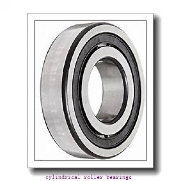 2.953 Inch   75 Millimeter x 4.248 Inch   107.9 Millimeter x 2.126 Inch   54 Millimeter  INA RSL185015  Cylindrical Roller Bearings #1 image