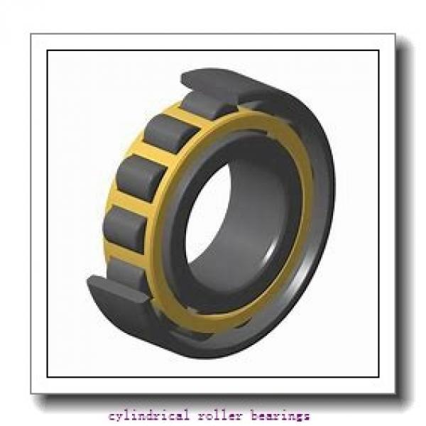 1.772 Inch | 45 Millimeter x 3.346 Inch | 85 Millimeter x 1.125 Inch | 28.575 Millimeter  ROLLWAY BEARING D-209-18  Cylindrical Roller Bearings #1 image